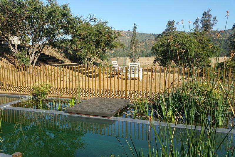 piscina natural - Cristóbal Elgueta